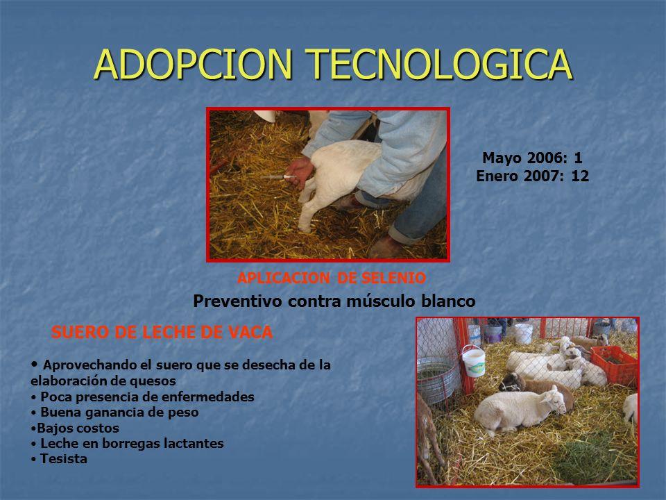 ADOPCION TECNOLOGICA SUERO DE LECHE DE VACA Aprovechando el suero que se desecha de la elaboración de quesos Poca presencia de enfermedades Buena gana