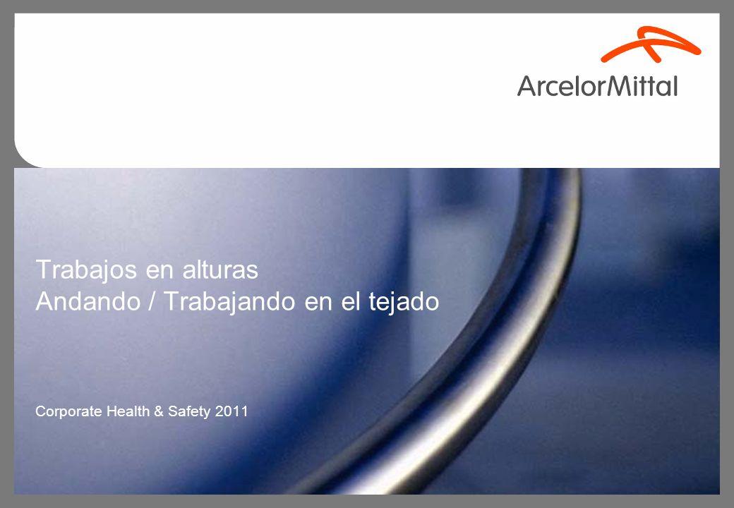 Trabajos en alturas Andando / Trabajando en el tejado Corporate Health & Safety 2011