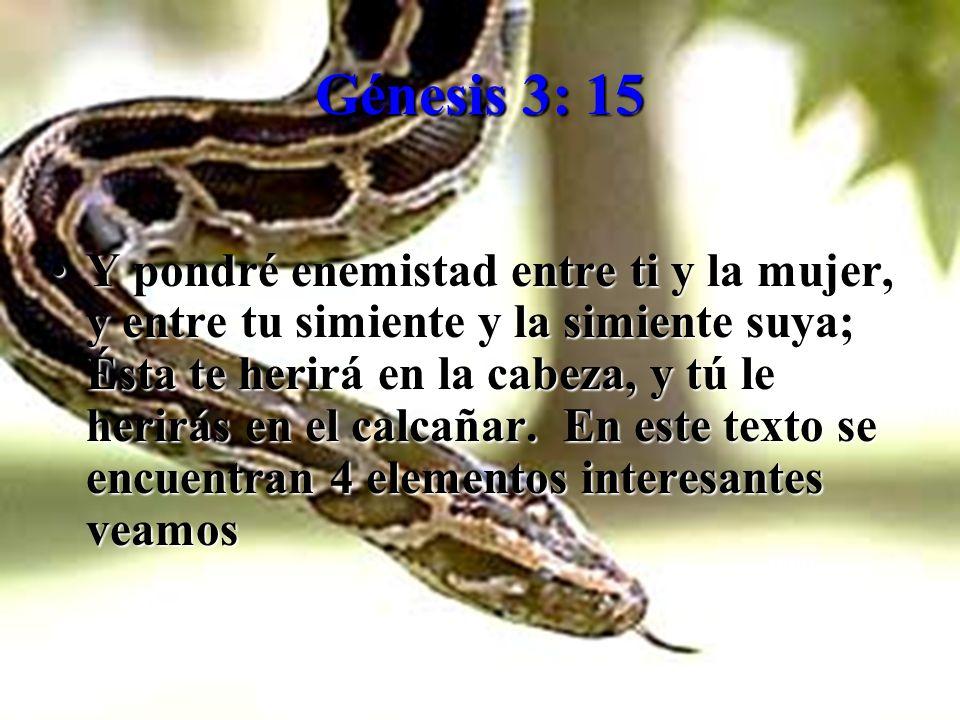 Génesis 3: 15 Ypondré enemistad entre ti y la mujer, y entre tu simiente y la simiente suya; Ésta te herirá en la cabeza, y tú le herirás en el calcañ