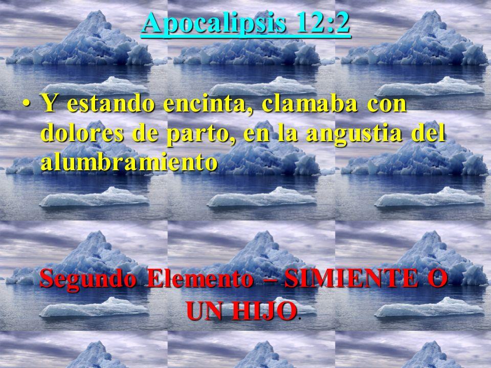 Apocalipsis 12:2 Yestando encinta, clamaba con dolores de parto, en la angustia del alumbramiento Segundo Elemento – SIMIENTE O UN HIJO.