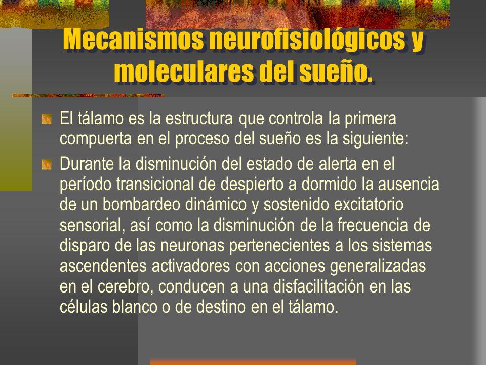 Mecanismos neurofisiológicos y moleculares del sueño. El tálamo es la estructura que controla la primera compuerta en el proceso del sueño es la sigui