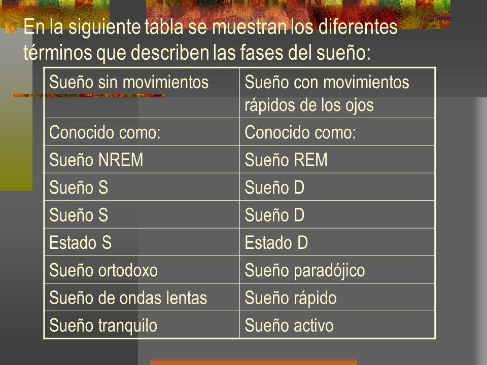 En la siguiente tabla se muestran los diferentes términos que describen las fases del sueño: Sueño sin movimientosSueño con movimientos rápidos de los