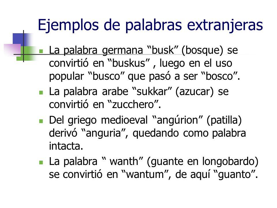 Ejemplos de palabras extranjeras La palabra germana busk (bosque) se convirtió en buskus, luego en el uso popular busco que pasó a ser bosco. La palab