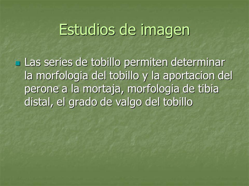 Estudios de imagen Las series de tobillo permiten determinar la morfologia del tobillo y la aportacion del perone a la mortaja, morfologia de tibia di