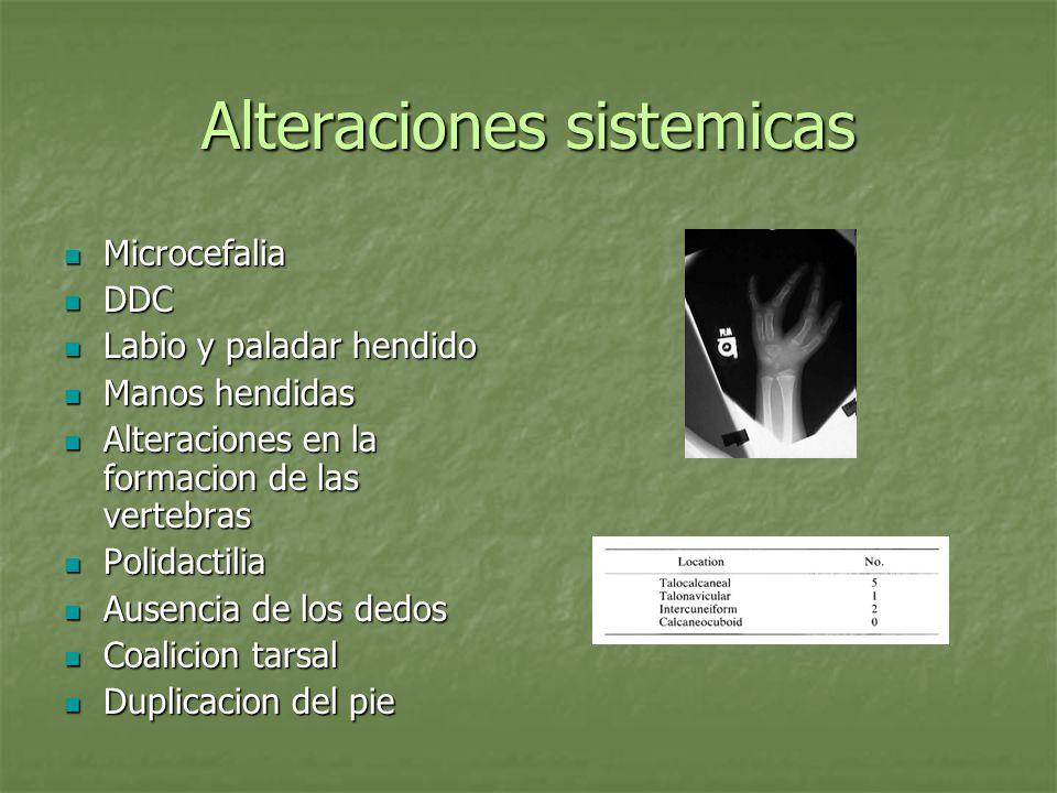 Alteraciones sistemicas Microcefalia Microcefalia DDC DDC Labio y paladar hendido Labio y paladar hendido Manos hendidas Manos hendidas Alteraciones e
