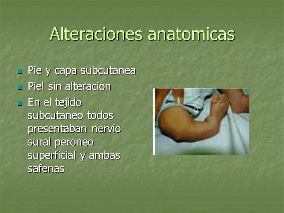 Alteraciones anatomicas Pie y capa subcutanea Pie y capa subcutanea Piel sin alteracion Piel sin alteracion En el tejido subcutaneo todos presentaban
