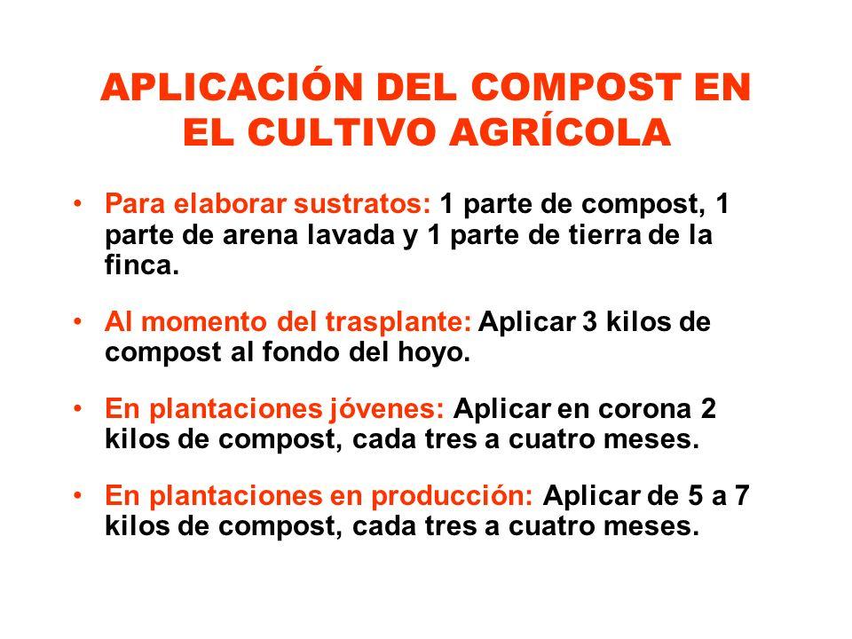 APLICACIÓN DEL COMPOST EN EL CULTIVO AGRÍCOLA Para elaborar sustratos: 1 parte de compost, 1 parte de arena lavada y 1 parte de tierra de la finca. Al