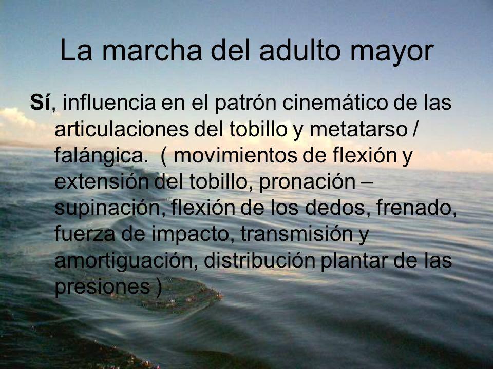 La marcha del adulto mayor Sí, influencia en el patrón cinemático de las articulaciones del tobillo y metatarso / falángica. ( movimientos de flexión
