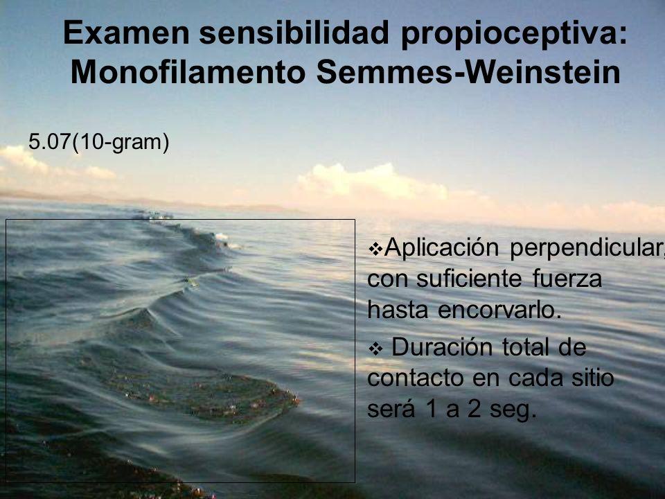 Examen sensibilidad propioceptiva: Monofilamento Semmes-Weinstein 5.07(10-gram) Aplicación perpendicular, con suficiente fuerza hasta encorvarlo. Dura