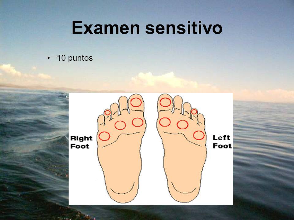 Examen sensitivo 10 puntos