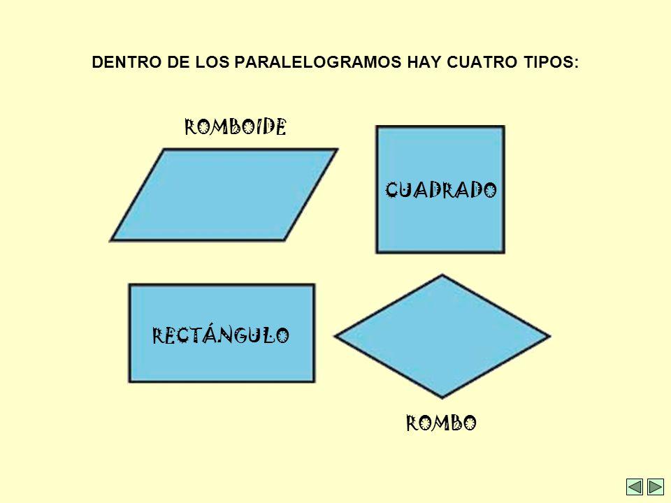 DENTRO DE LOS CUADRILÁTEROS TENEMOS: PARALELOGRAMOSNO PARALELOGRAMOS