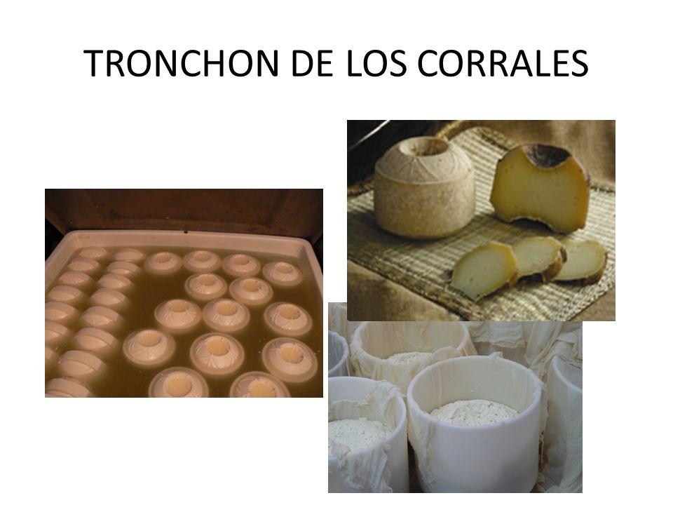 TRONCHON DE LOS CORRALES