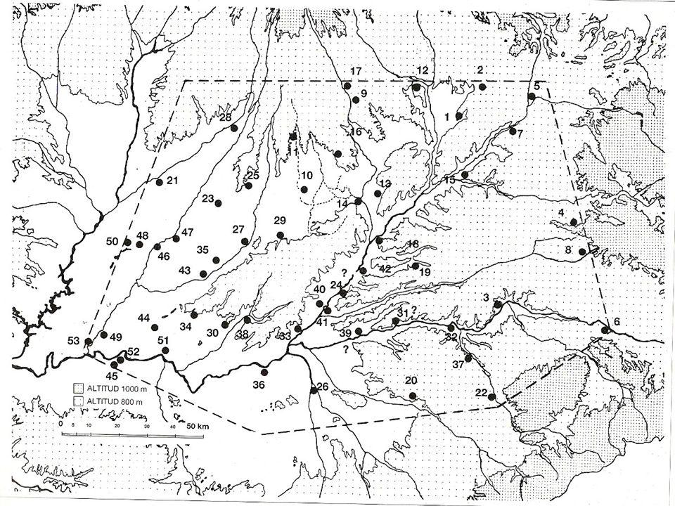 4.3 Los oppida en el territorio Densidad, geografía y jerarquización del poblamiento Destaca una escasa densidad general, evidente por la existencia d