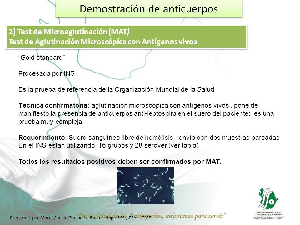 Demostración de anticuerpos 2) Test de Microaglutinación (MAT) Test de Aglutinación Microscópica con Antígenos vivos 2) Test de Microaglutinación (MAT