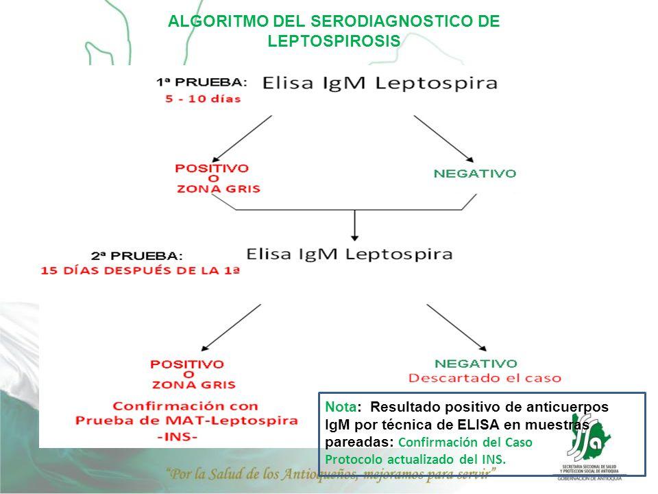ALGORITMO DEL SERODIAGNOSTICO DE LEPTOSPIROSIS Nota: Resultado positivo de anticuerpos IgM por técnica de ELISA en muestras pareadas: Confirmación del