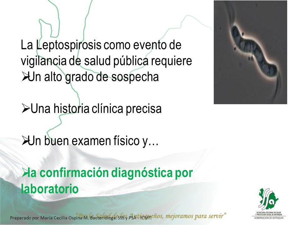 1) Técnica ELISA IgM para leptospira: Con relación a la muestra… Toma y envío de muestras para Elisa IgM y MAT Momento de la toma: Las leptospiras usualmente circulan en la sangre del paciente por aproximadamente 10 días después de la aparición de la enfermedad.