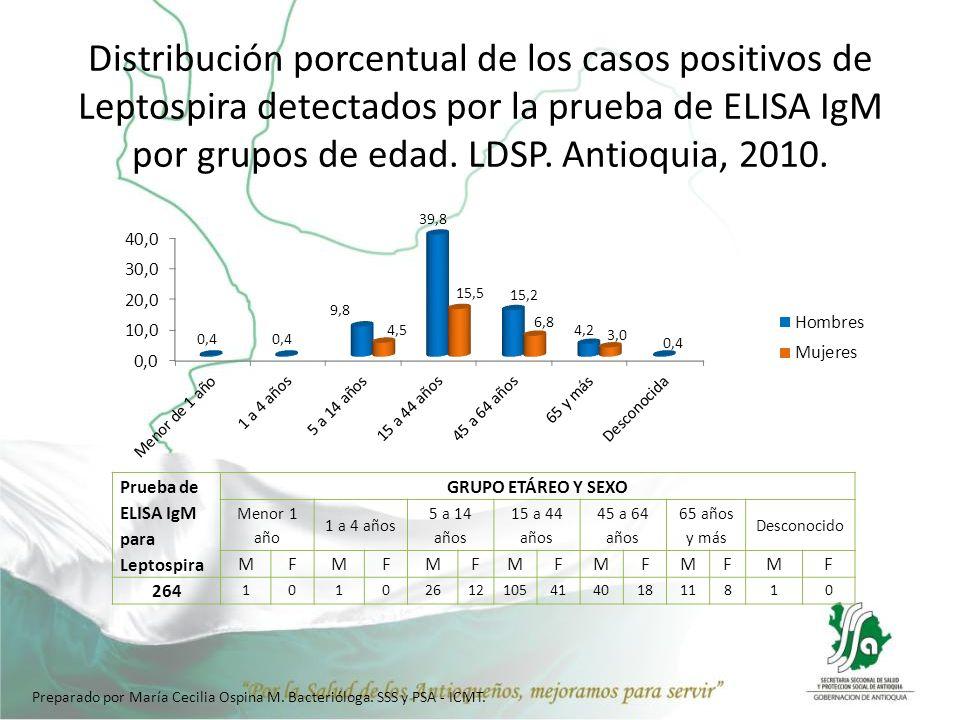Distribución porcentual de los casos positivos de Leptospira detectados por la prueba de ELISA IgM por grupos de edad. LDSP. Antioquia, 2010. Prueba d