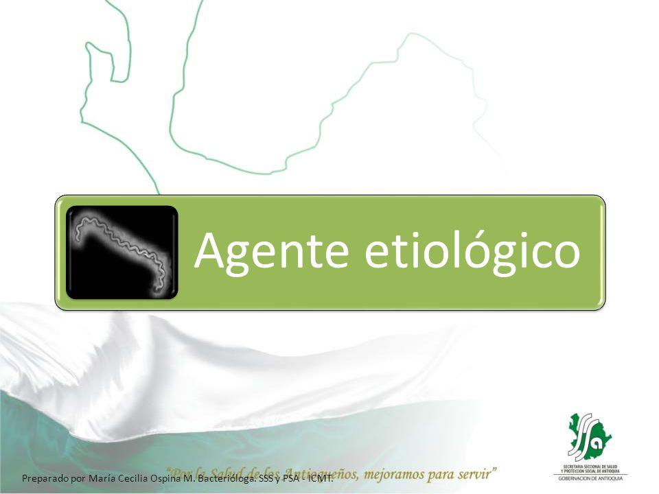 Agente etiológico Preparado por María Cecilia Ospina M. Bacterióloga. SSS y PSA - ICMT.