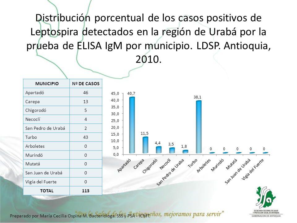 Distribución porcentual de los casos positivos de Leptospira detectados en la región de Urabá por la prueba de ELISA IgM por municipio. LDSP. Antioqui