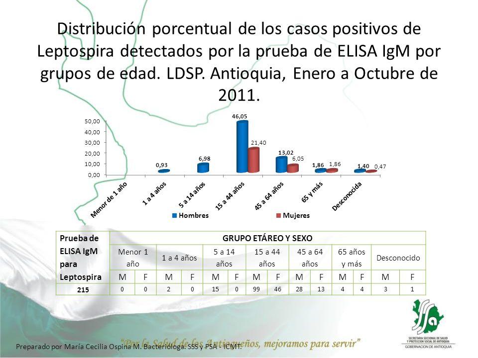 Distribución porcentual de los casos positivos de Leptospira detectados por la prueba de ELISA IgM por grupos de edad. LDSP. Antioquia, Enero a Octubr