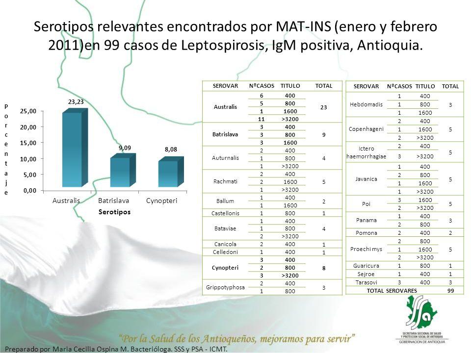 Serotipos relevantes encontrados por MAT-INS (enero y febrero 2011)en 99 casos de Leptospirosis, IgM positiva, Antioquia. SEROVARNºCASOSTITULOTOTAL Au