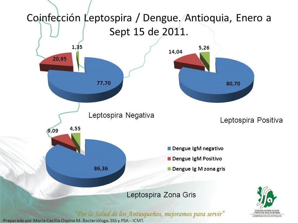 Coinfección Leptospira / Dengue. Antioquia, Enero a Sept 15 de 2011. Leptospira Negativa Leptospira Positiva Leptospira Zona Gris Preparado por Maria