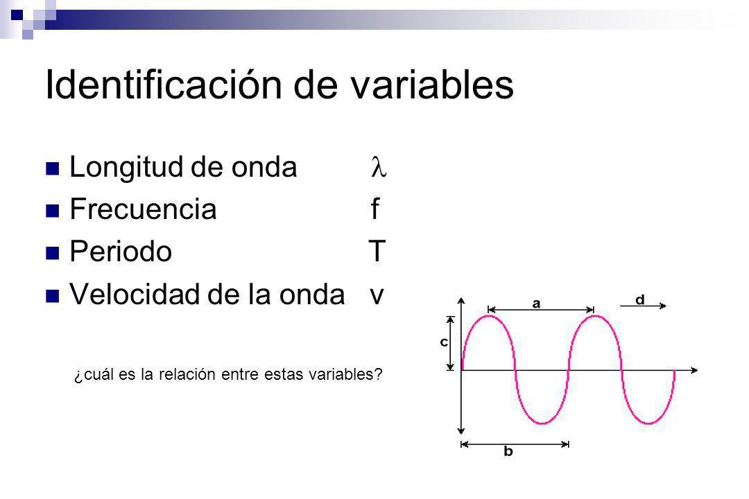 Identificación de variables Longitud de onda Frecuencia f Periodo T Velocidad de la onda v ¿cuál es la relación entre estas variables?
