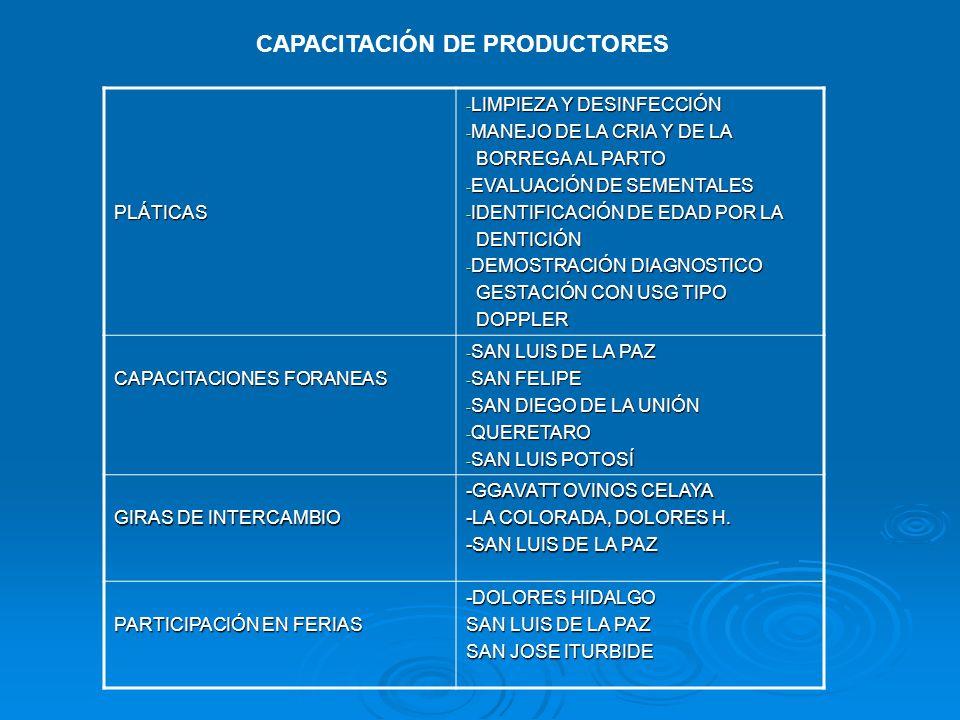 CAPACITACIÓN DE PRODUCTORES PLÁTICAS - LIMPIEZA Y DESINFECCIÓN - MANEJO DE LA CRIA Y DE LA BORREGA AL PARTO BORREGA AL PARTO - EVALUACIÓN DE SEMENTALE