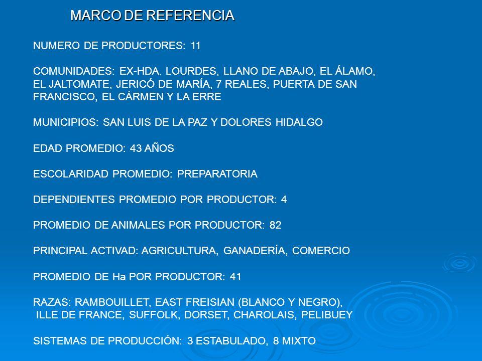 MARCO DE REFERENCIA NUMERO DE PRODUCTORES: 11 COMUNIDADES: EX-HDA. LOURDES, LLANO DE ABAJO, EL ÁLAMO, EL JALTOMATE, JERICÓ DE MARÍA, 7 REALES, PUERTA