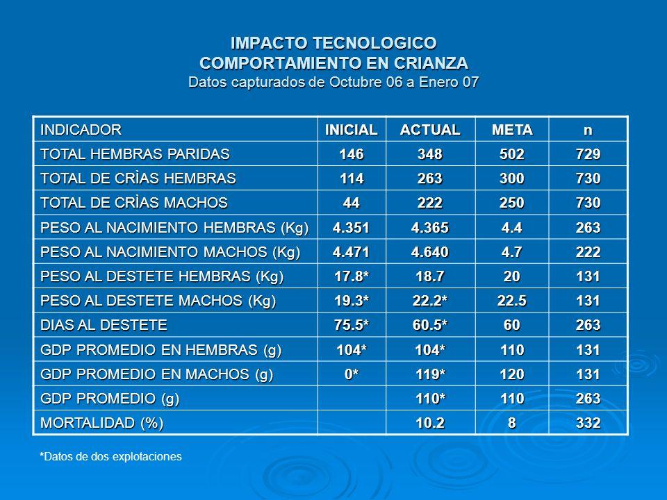 IMPACTO TECNOLOGICO COMPORTAMIENTO EN CRIANZA Datos capturados de Octubre 06 a Enero 07 INDICADORINICIALACTUALMETAn TOTAL HEMBRAS PARIDAS 146348502729