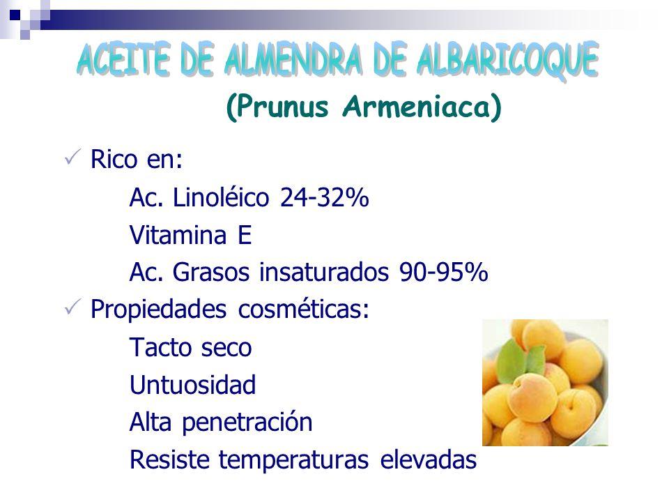 (Prunus Armeniaca) Rico en: Ac. Linoléico 24-32% Vitamina E Ac. Grasos insaturados 90-95% Propiedades cosméticas: Tacto seco Untuosidad Alta penetraci