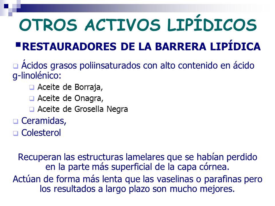 OTROS ACTIVOS LIPÍDICOS RESTAURADORES DE LA BARRERA LIPÍDICA Ácidos grasos poliinsaturados con alto contenido en ácido g-linolénico: Aceite de Borraja