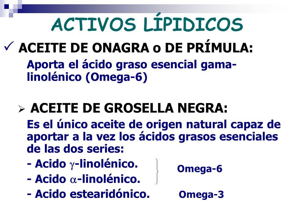 ACTIVOS LÍPIDICOS ACEITE DE ONAGRA o DE PRÍMULA: Aporta el ácido graso esencial gama- linolénico (Omega-6) ACEITE DE GROSELLA NEGRA: Es el único aceit