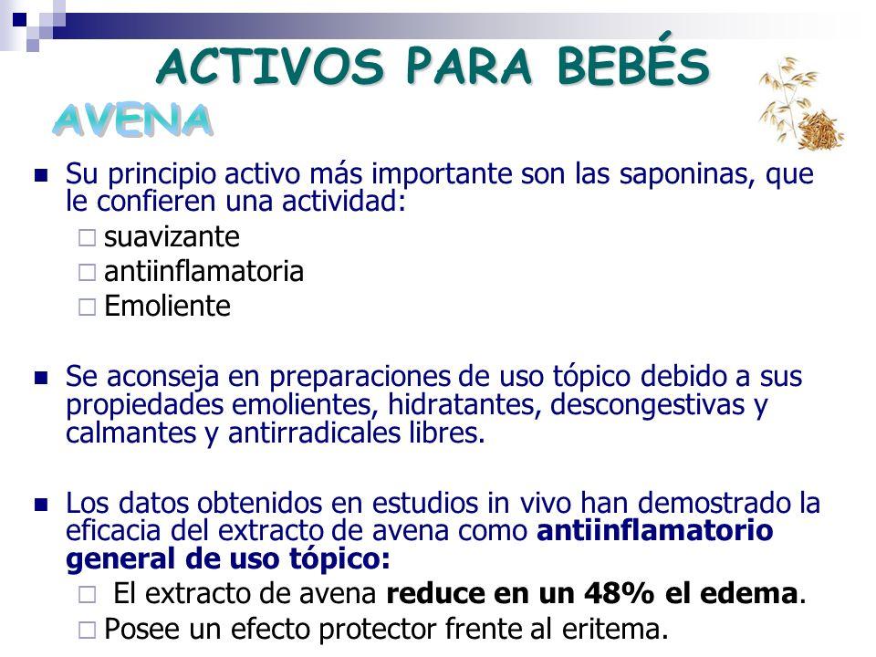 ACTIVOS PARA BEBÉS Su principio activo más importante son las saponinas, que le confieren una actividad: suavizante antiinflamatoria Emoliente Se acon