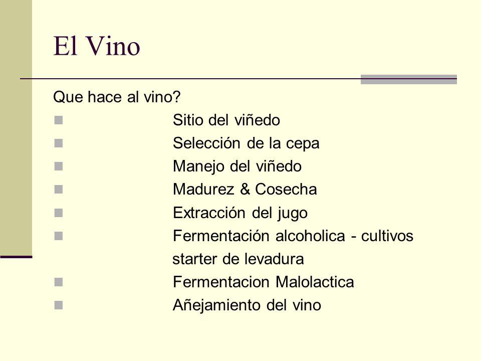 El Vino Que hace al vino? Sitio del viñedo Selección de la cepa Manejo del viñedo Madurez & Cosecha Extracción del jugo Fermentación alcoholica - cult