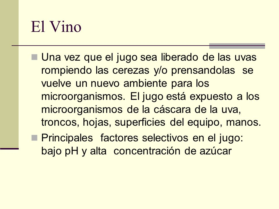 El Vino Una vez que el jugo sea liberado de las uvas rompiendo las cerezas y/o prensandolas se vuelve un nuevo ambiente para los microorganismos. El j