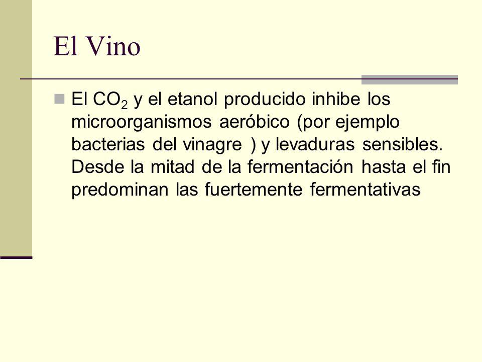 El Vino El CO 2 y el etanol producido inhibe los microorganismos aeróbico (por ejemplo bacterias del vinagre ) y levaduras sensibles. Desde la mitad d
