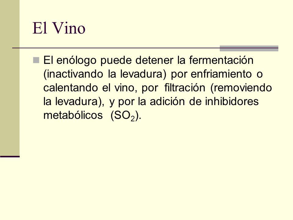 El Vino El enólogo puede detener la fermentación (inactivando la levadura) por enfriamiento o calentando el vino, por filtración (removiendo la levadu