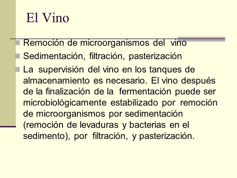 El Vino Remoción de microorganismos del vino Sedimentación, filtración, pasterización La supervisión del vino en los tanques de almacenamiento es nece