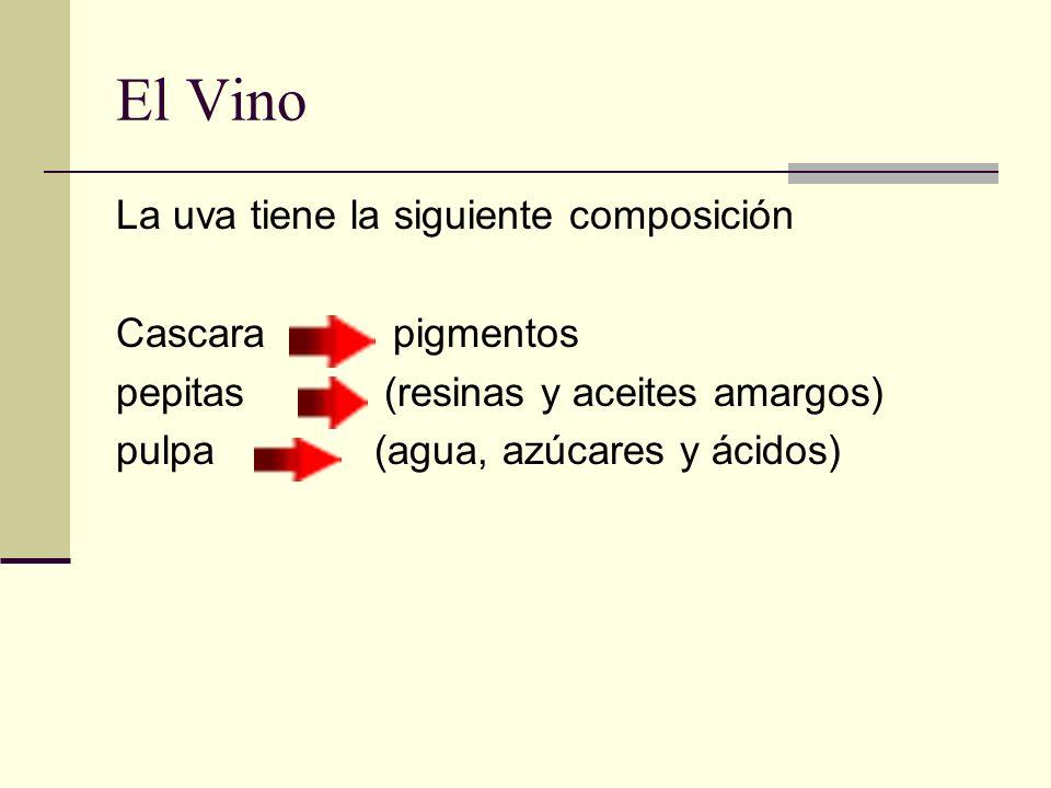 El Vino La uva tiene la siguiente composición Cascara pigmentos pepitas (resinas y aceites amargos) pulpa (agua, azúcares y ácidos)