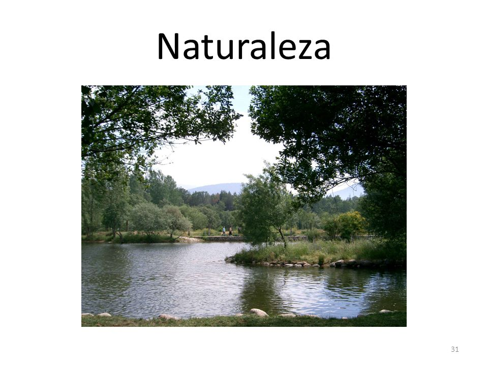 Naturaleza OrigenLatín (natura) Ejemplola vida es el gran milagro de la naturaleza UsoEn ciertas occaciones; p.e. A la hora de habla o estar en contac