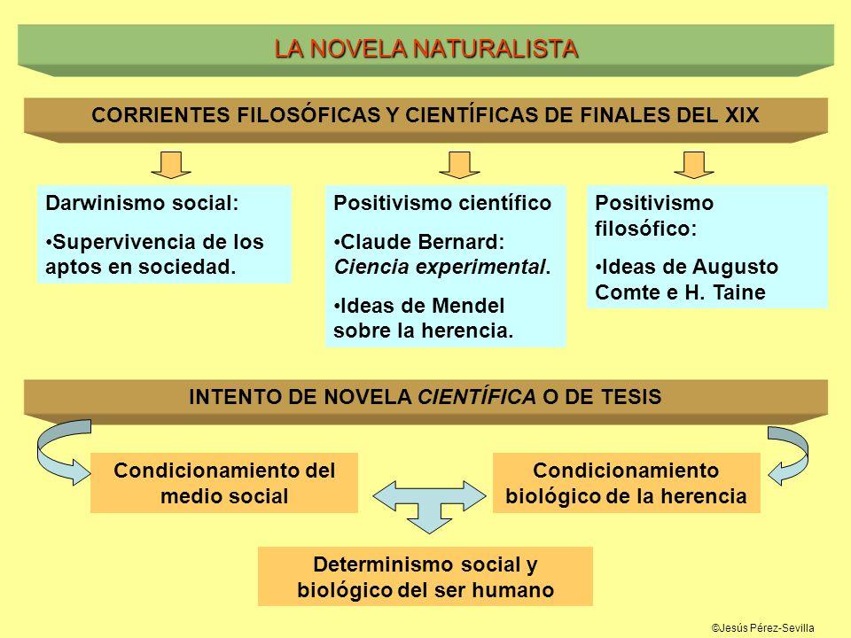 ©Jesús Pérez-Sevilla LA NOVELA NATURALISTA CORRIENTES FILOSÓFICAS Y CIENTÍFICAS DE FINALES DEL XIX Darwinismo social: Supervivencia de los aptos en so