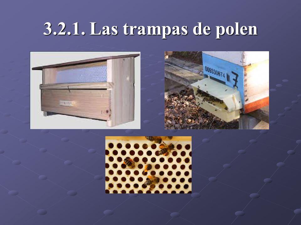 3.2.1. Las trampas de polen