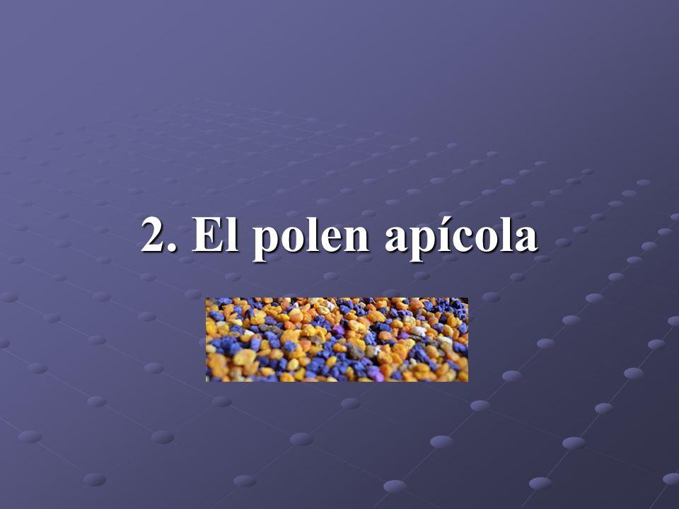 2.1.Origen El polen es el elemento masculino de las flores.