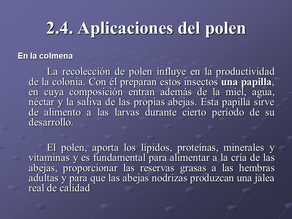 2.4. Aplicaciones del polen En la colmena La recolección de polen influye en la productividad de la colonia. Con él preparan estos insectos una papill