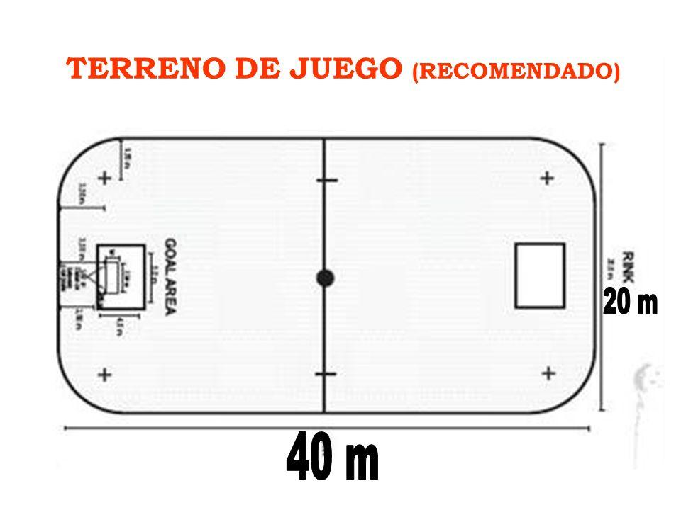 TERRENO DE JUEGO (RECOMENDADO)