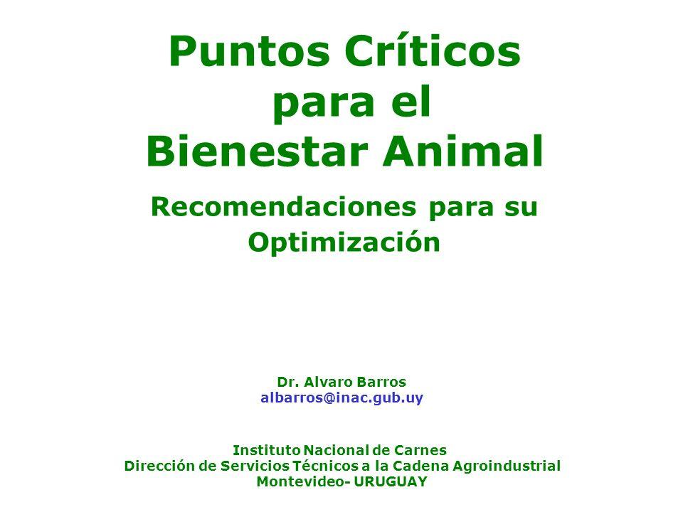Puntos Críticos para el Bienestar Animal Recomendaciones para su Optimización Dr. Alvaro Barros albarros@inac.gub.uy Instituto Nacional de Carnes Dire