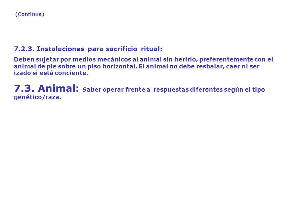 7.2.3. Instalaciones para sacrificio ritual: Deben sujetar por medios mecánicos al animal sin herirlo, preferentemente con el animal de pie sobre un p