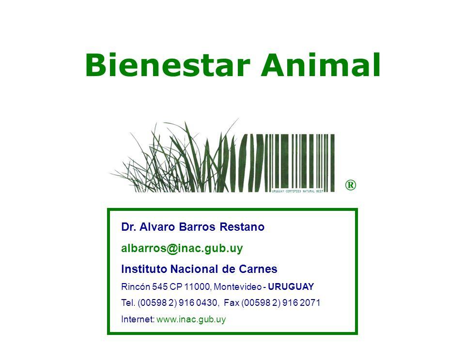 Dr. Alvaro Barros Restano albarros@inac.gub.uy Instituto Nacional de Carnes Rincón 545 CP 11000, Montevideo - URUGUAY Tel. (00598 2) 916 0430, Fax (00