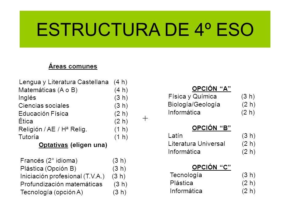 ESTRUCTURA DE 4º ESO + Áreas comunes Lengua y Literatura Castellana (4 h) Matemáticas (A o B) (4 h) Inglés (3 h) Ciencias sociales (3 h) Educación Fís